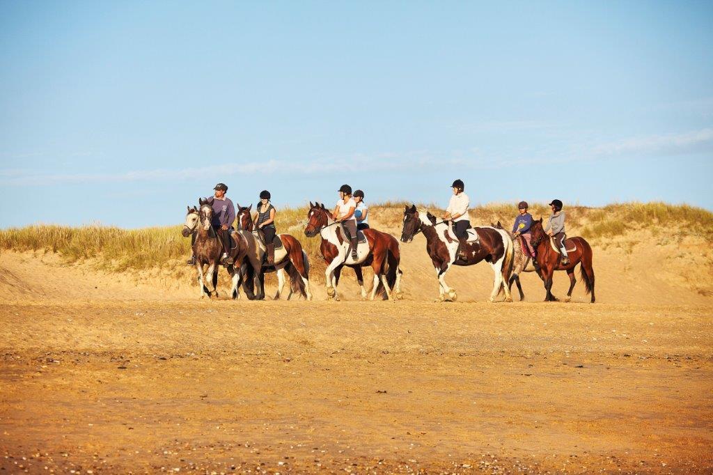 balade à cheval en bord de mer Vendée