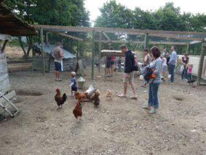 Mini ferme du camping en Vendée