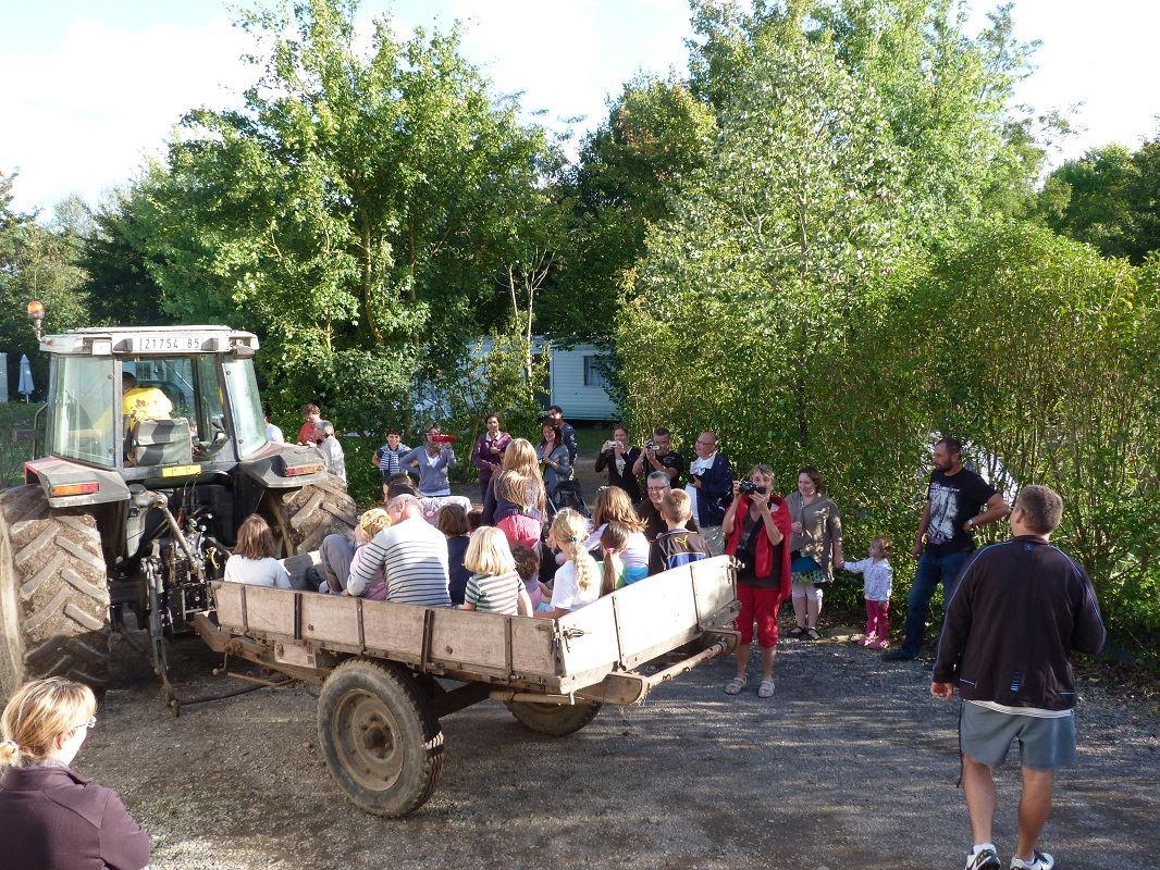 balade en tracteur à la ferme du camping