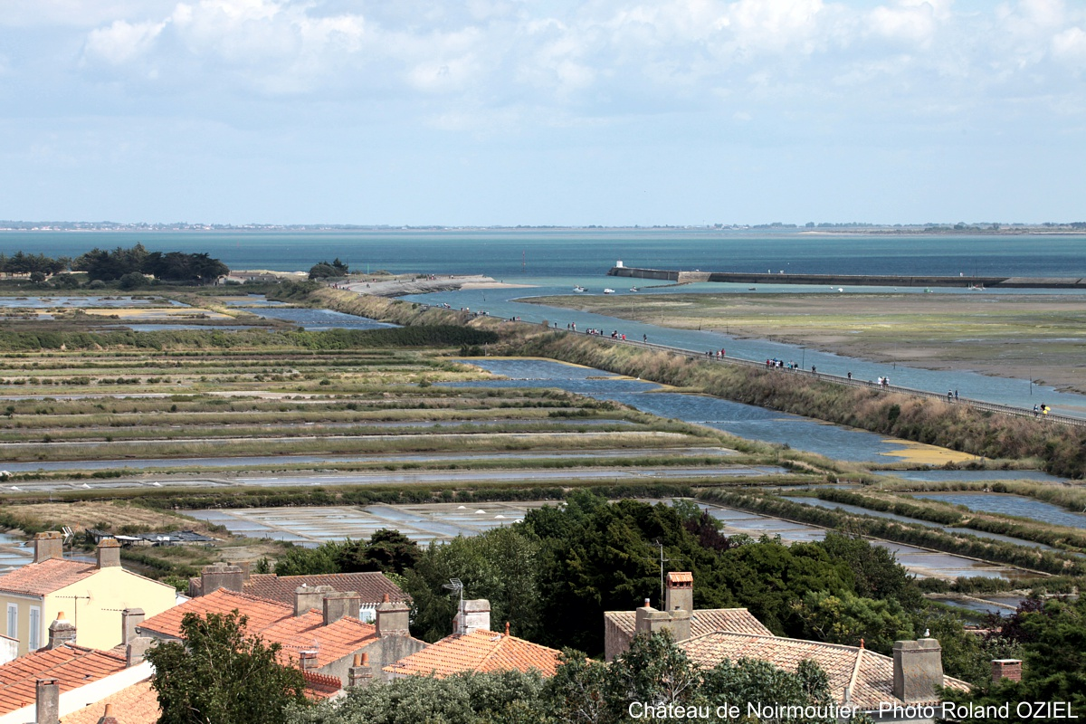 marais de Noirmoutier